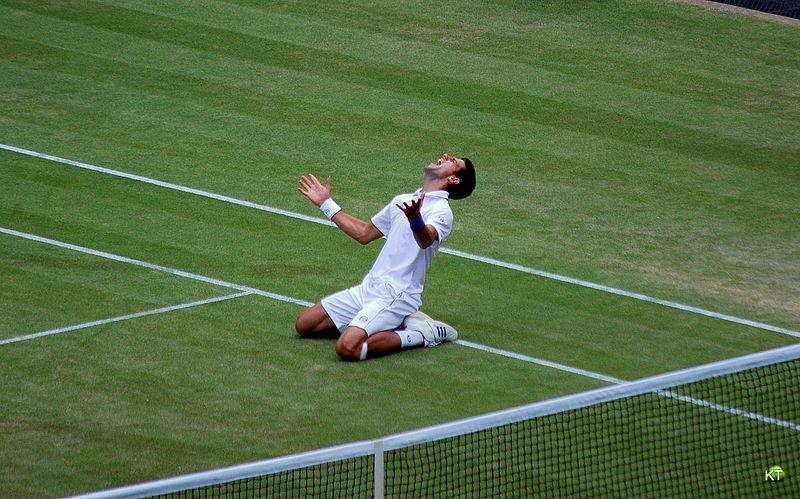 Novak Djokovic Wimbledon 2011 semifinal win celebration